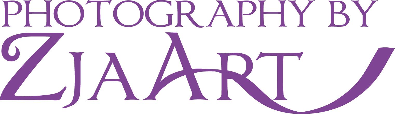 zjaart logo 4x4